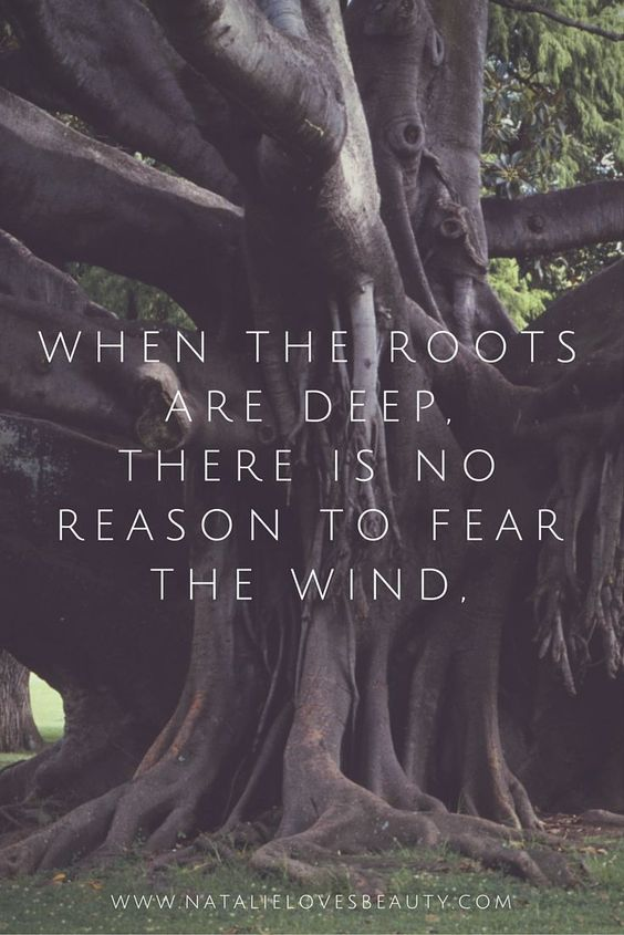 deep roots quote